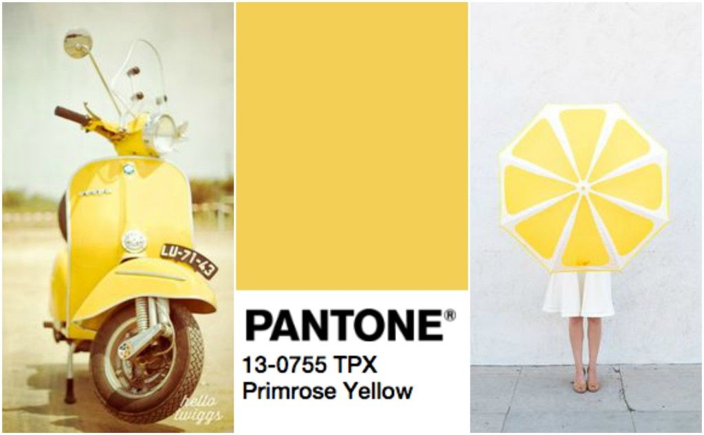 primrose-yellow-pantone-2017-cveta-totally